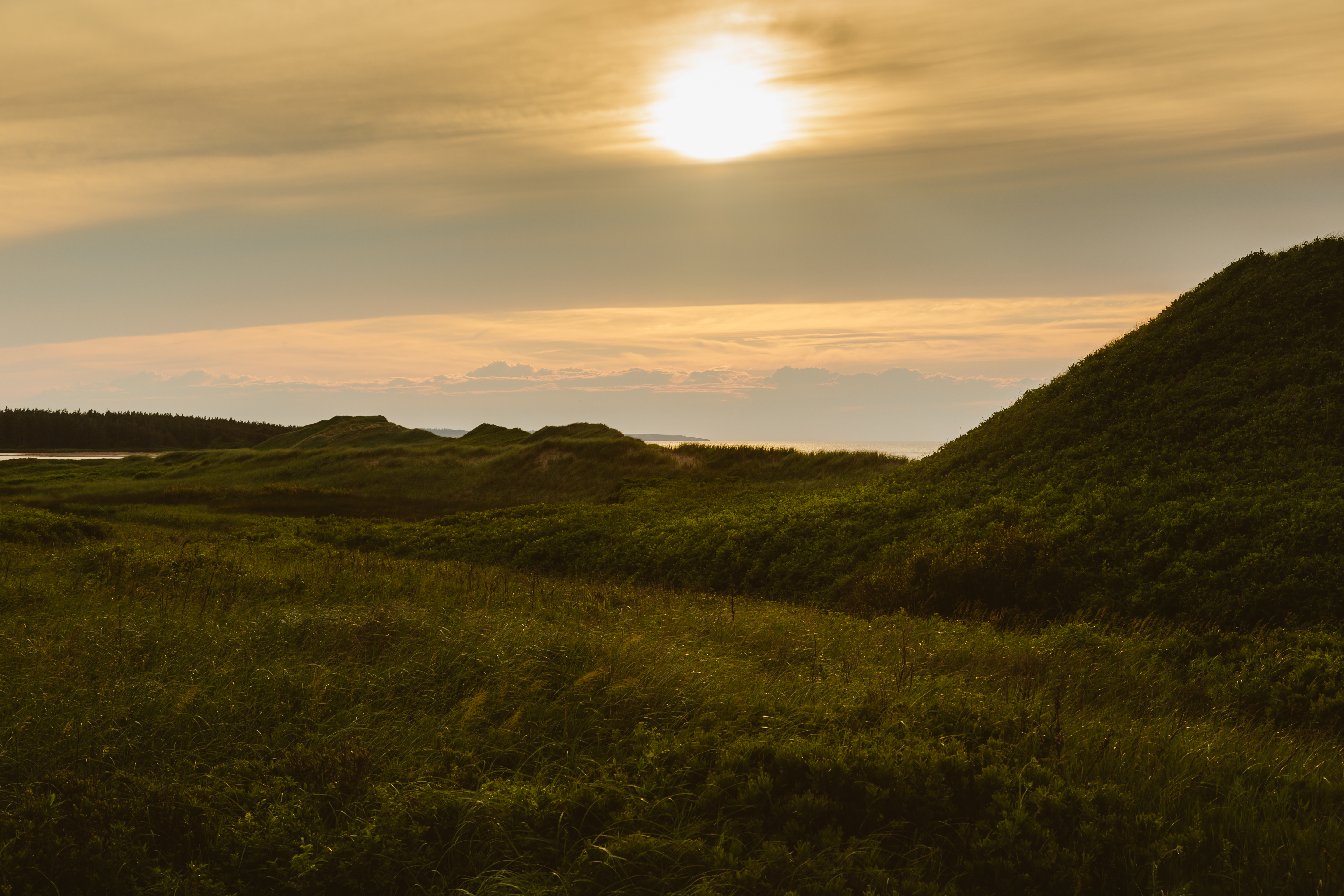 Prince Edward Island Stock Photo Cavendish Beach Dunes At Golden Hour Stock Photo