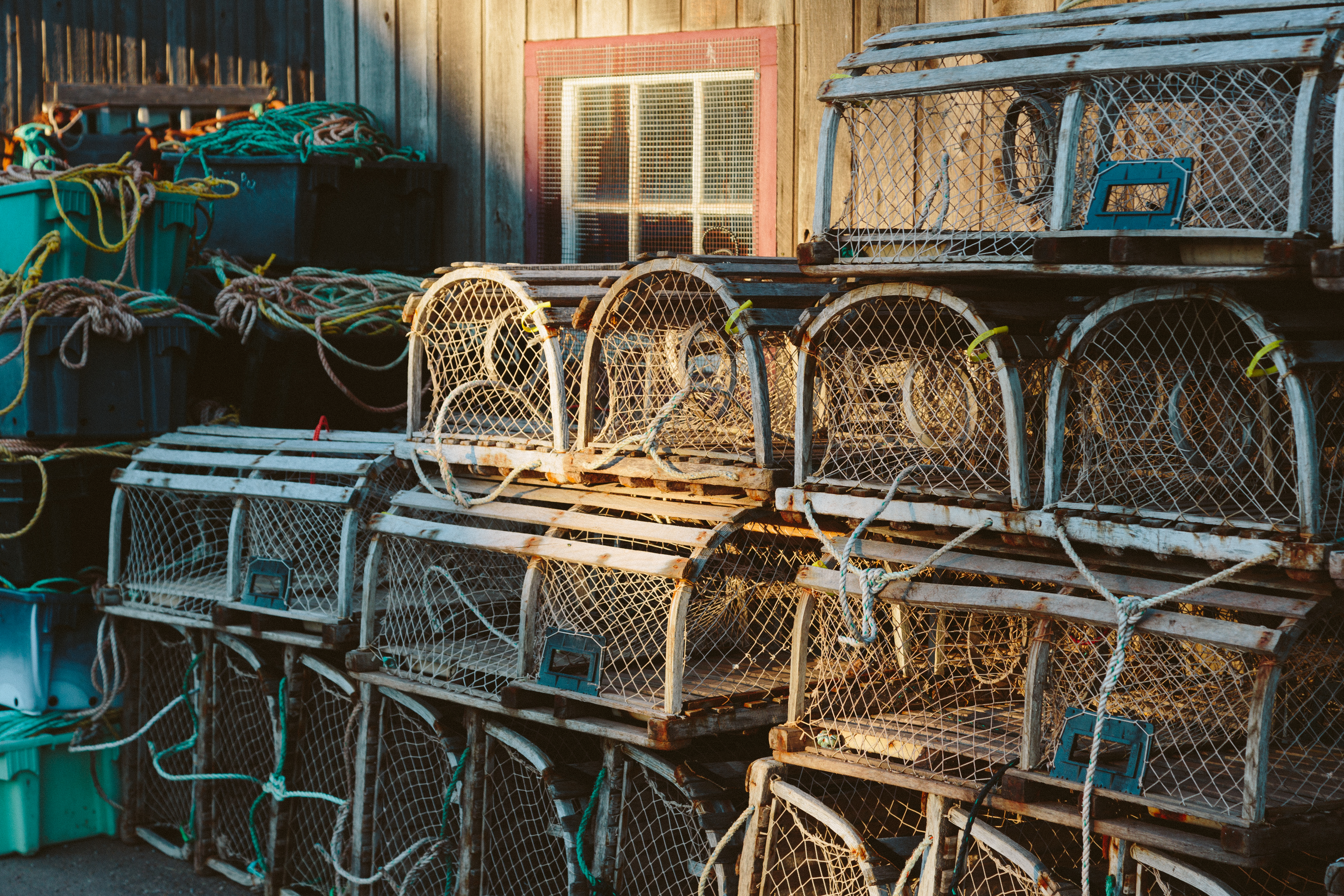 Prince Edward Island Stock Photo Lobster Traps In Morning Light Stock Photo
