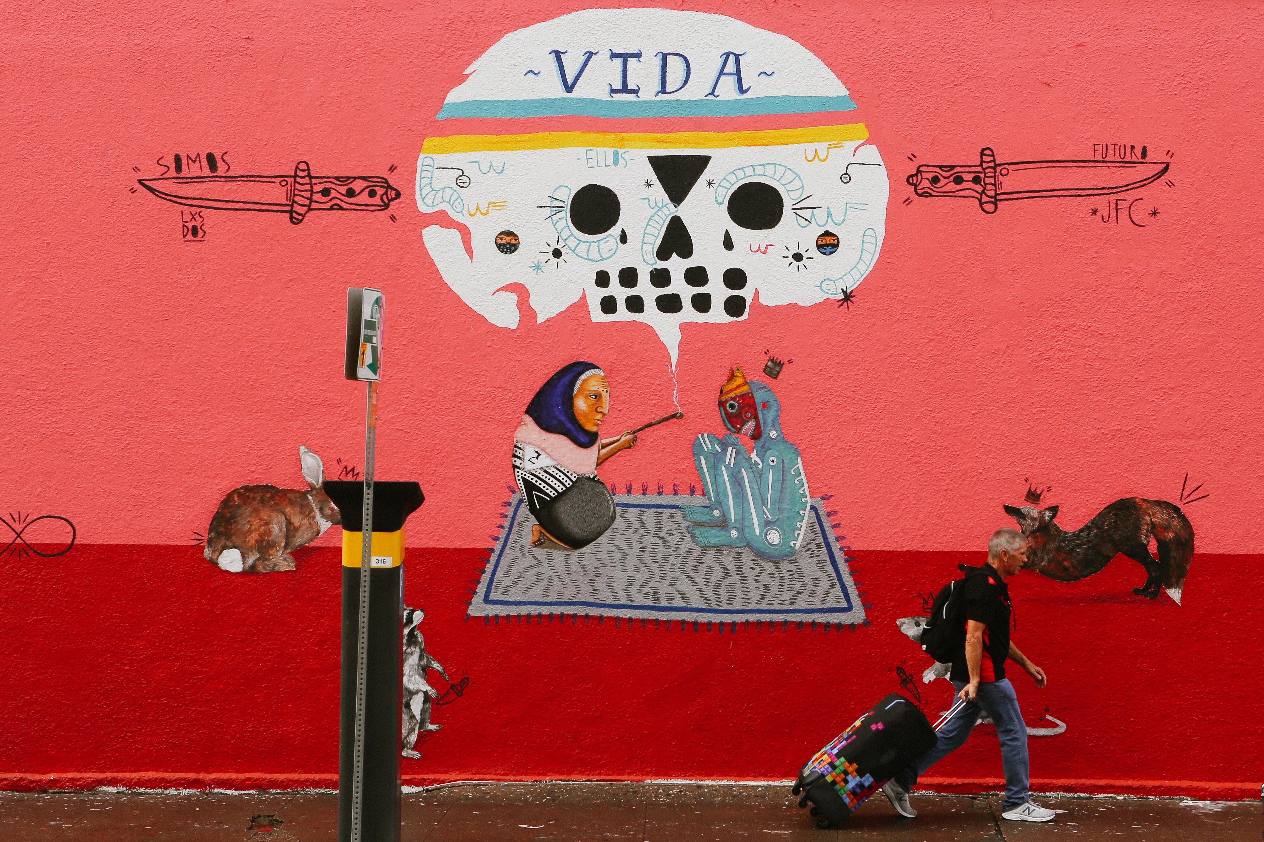 Austin Texas Vida Wall Mural Art