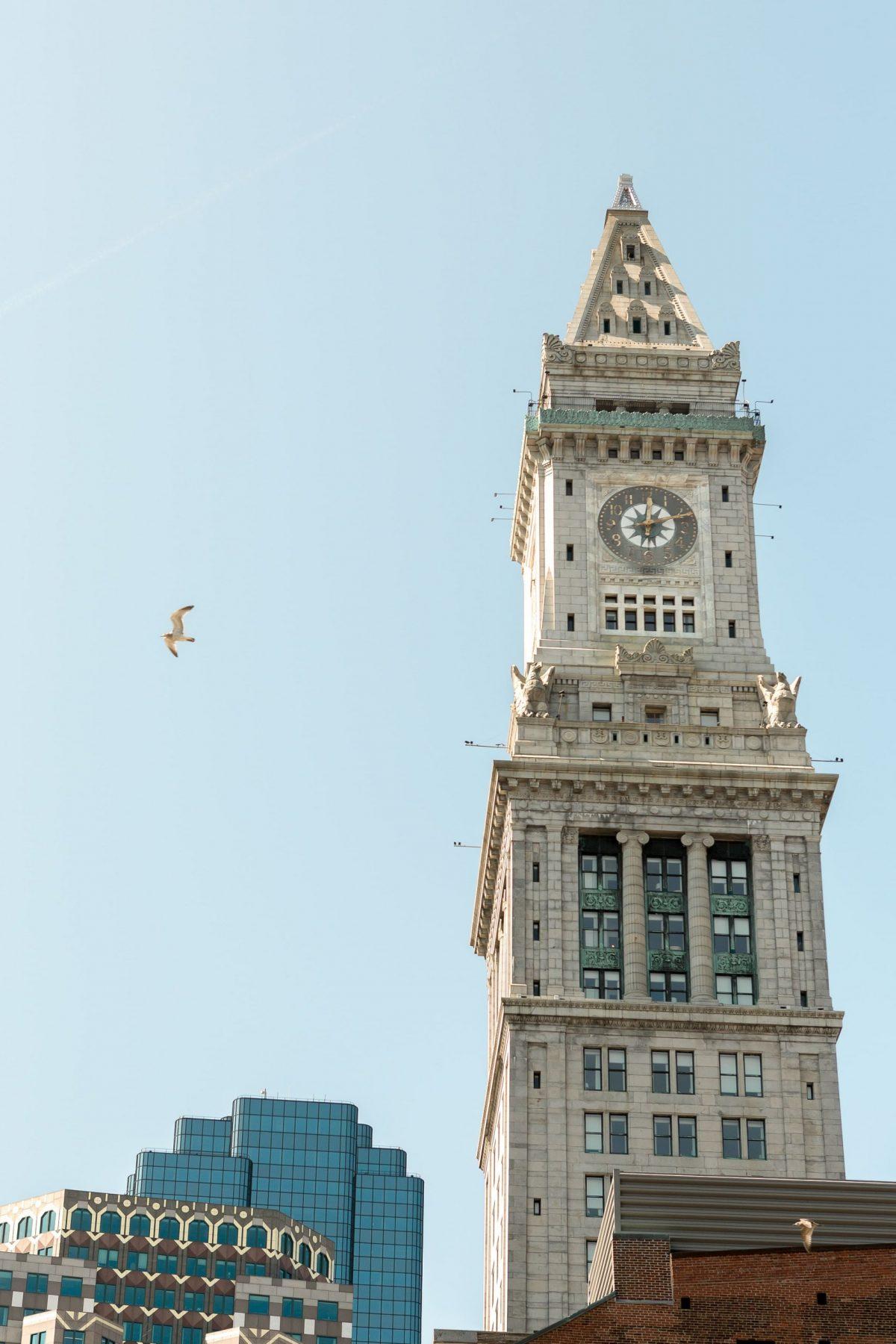 A photograph of Custom House Tower with Bird – Boston Massachusetts