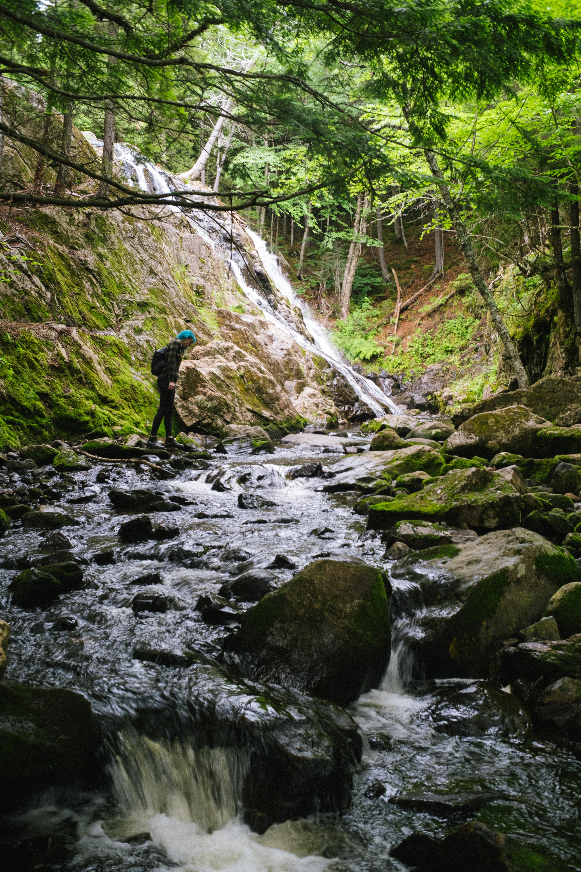 Exploring Moss Glen Kingston