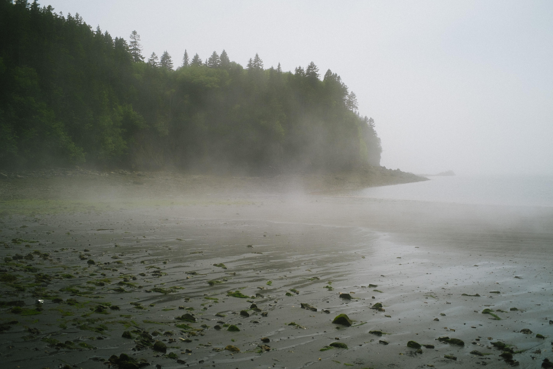 Rolling Fog Black Beach
