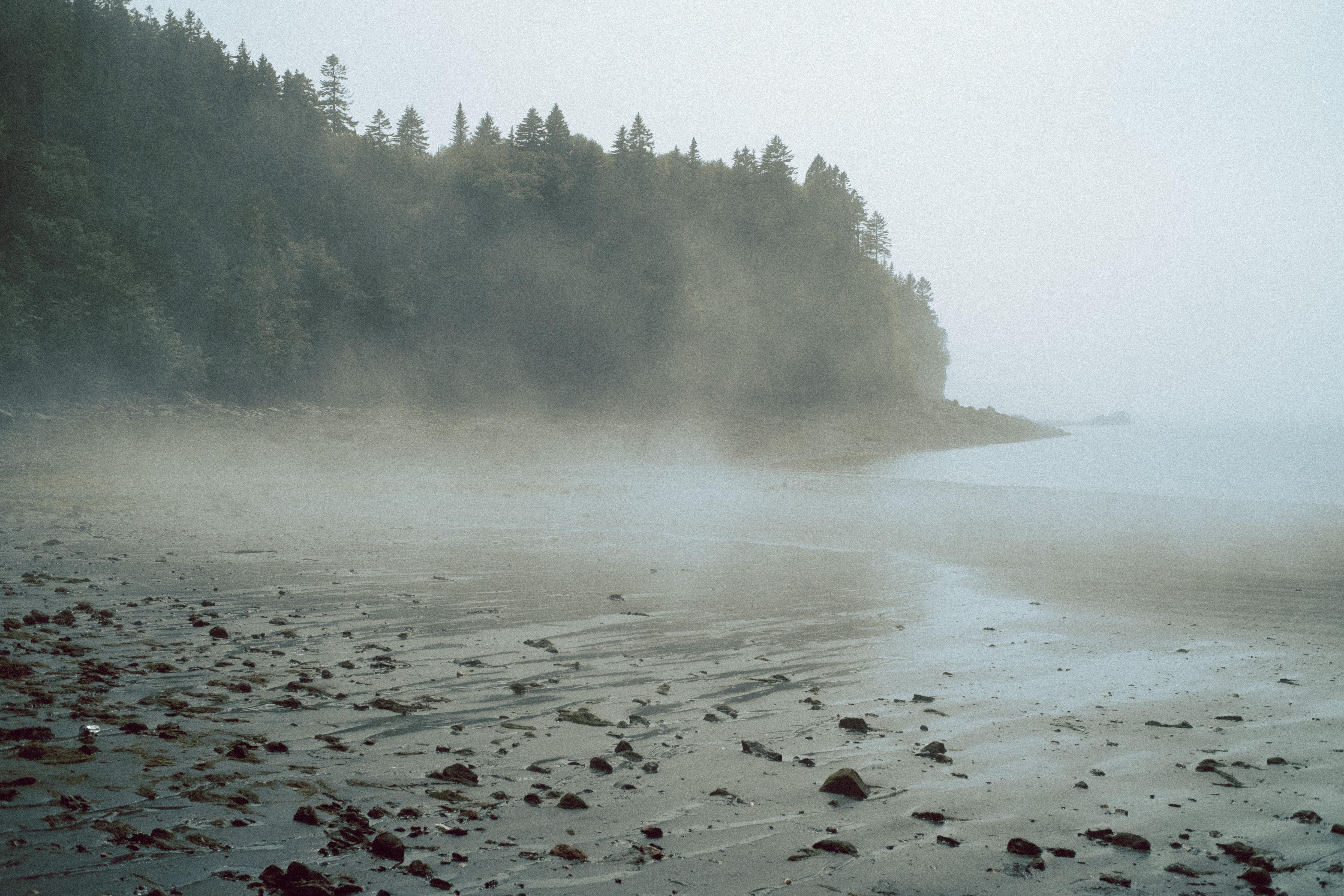 Black Beach With Fog Saint John NB